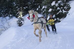 Chabanon, hiver 2014